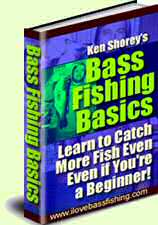 bass fishing basics